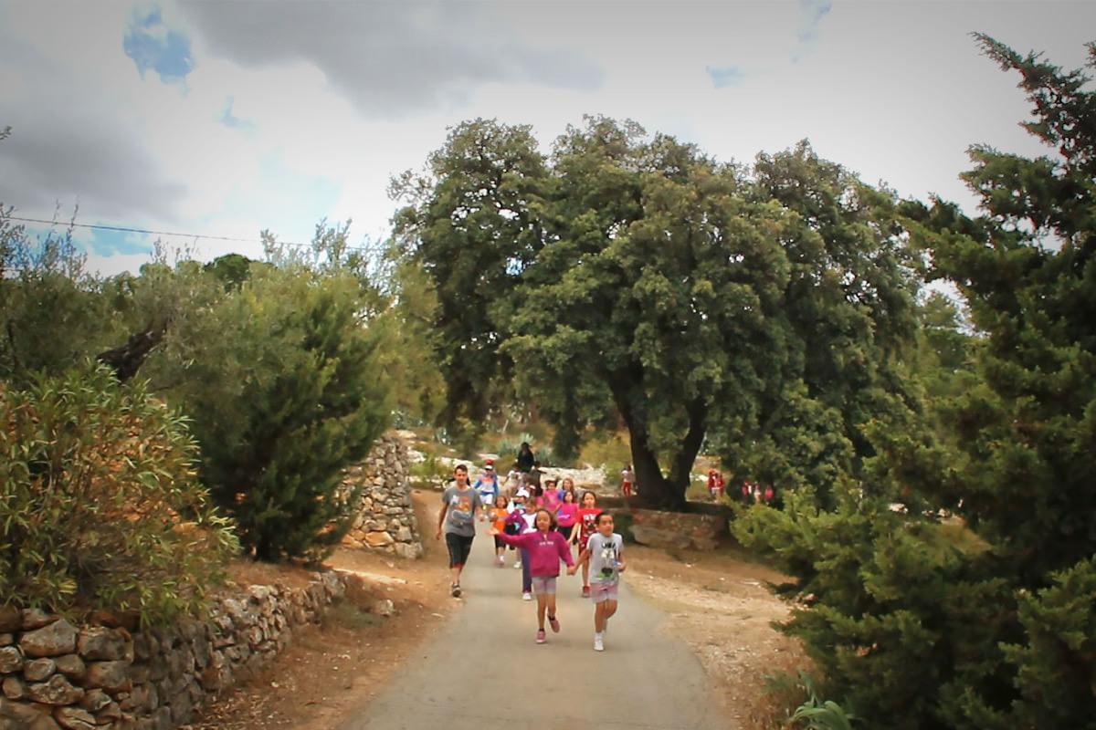 paisatge_caminant