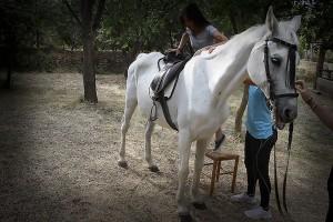 equitacion_caball1