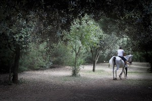 equitacion_caball_passeig